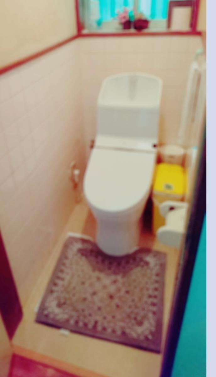 f:id:WheelchairFamily:20190711095024j:plain