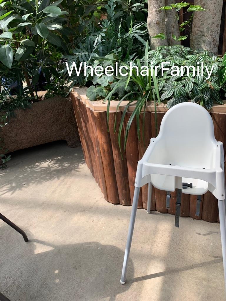 f:id:WheelchairFamily:20190918164739j:image