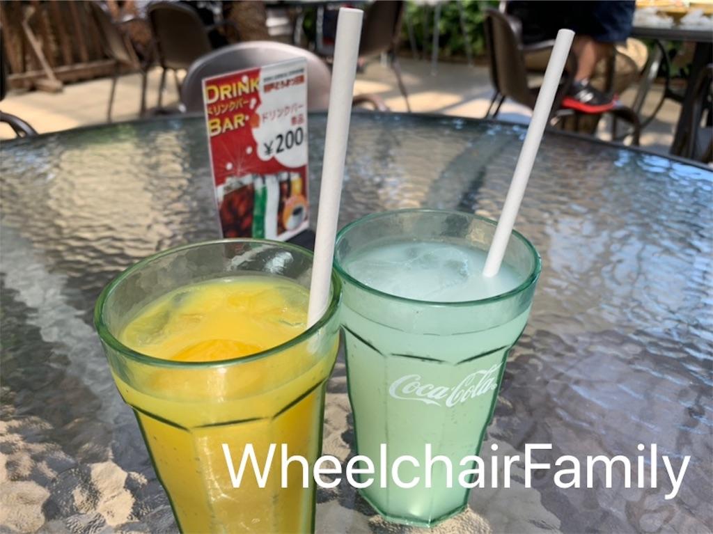 f:id:WheelchairFamily:20190918164817j:image