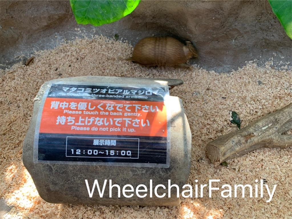 f:id:WheelchairFamily:20190918170748j:image