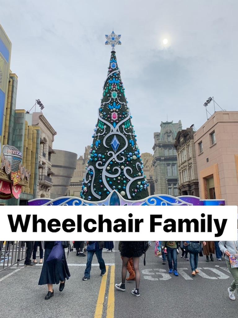 f:id:WheelchairFamily:20191105143613j:image