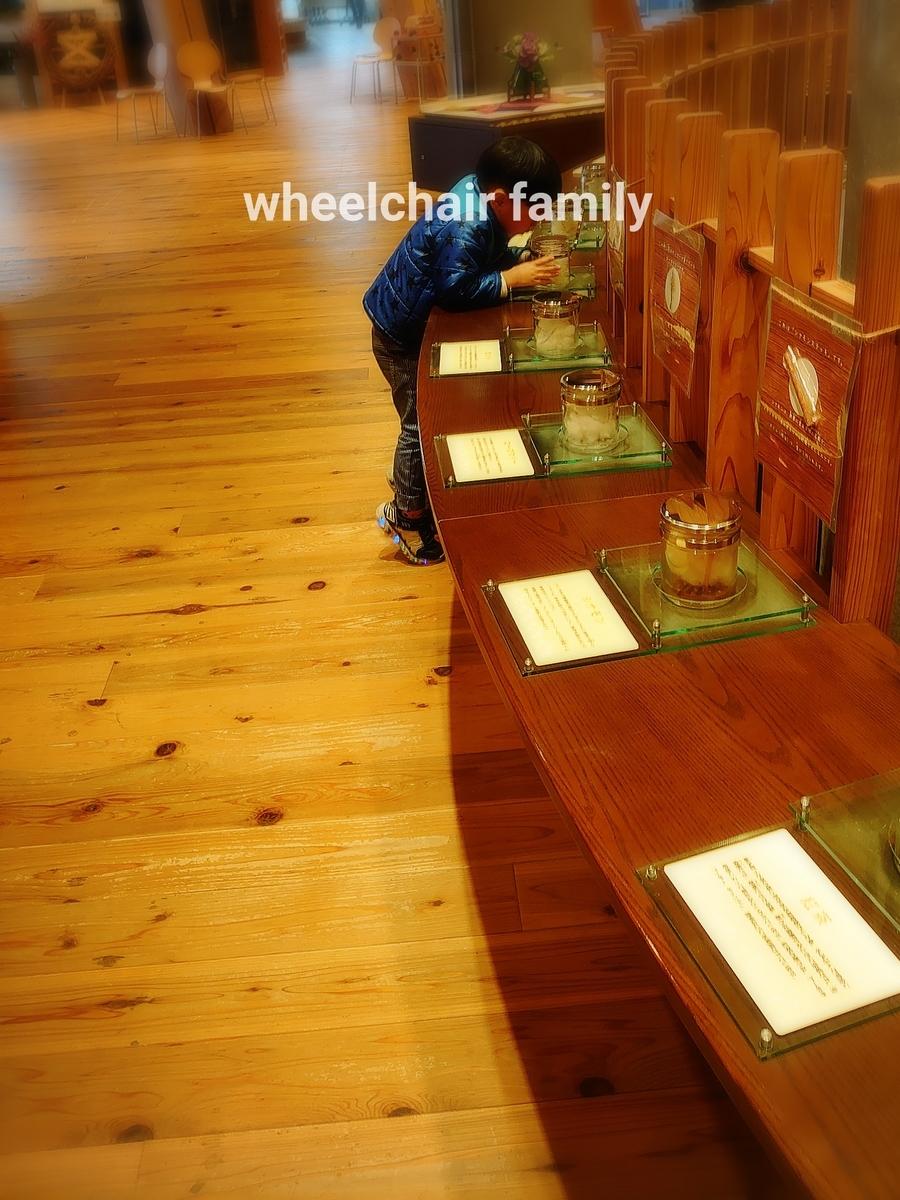 f:id:WheelchairFamily:20200114220718j:plain