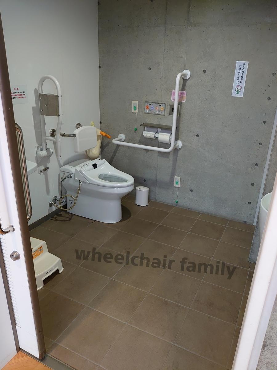 f:id:WheelchairFamily:20200114221053j:plain