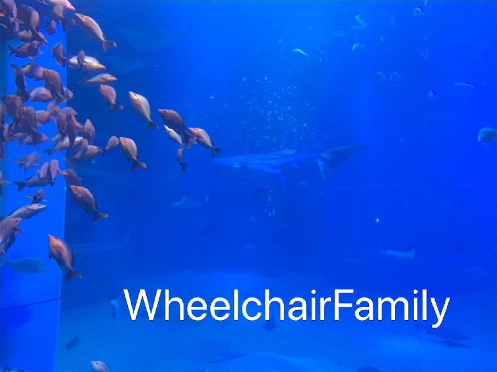 f:id:WheelchairFamily:20200205133822j:image