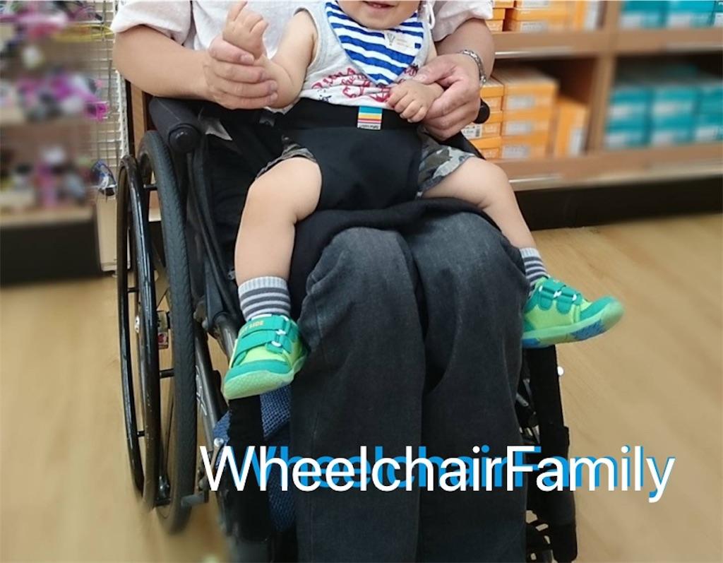 f:id:WheelchairFamily:20200206183829j:image