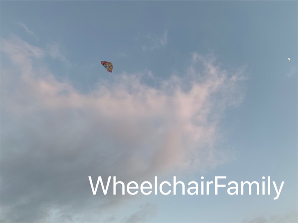 f:id:WheelchairFamily:20200216152044j:image