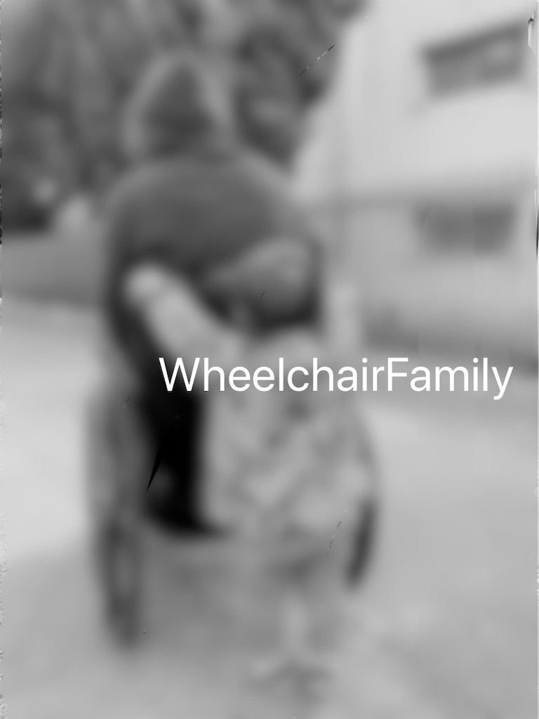 f:id:WheelchairFamily:20200409122059j:image