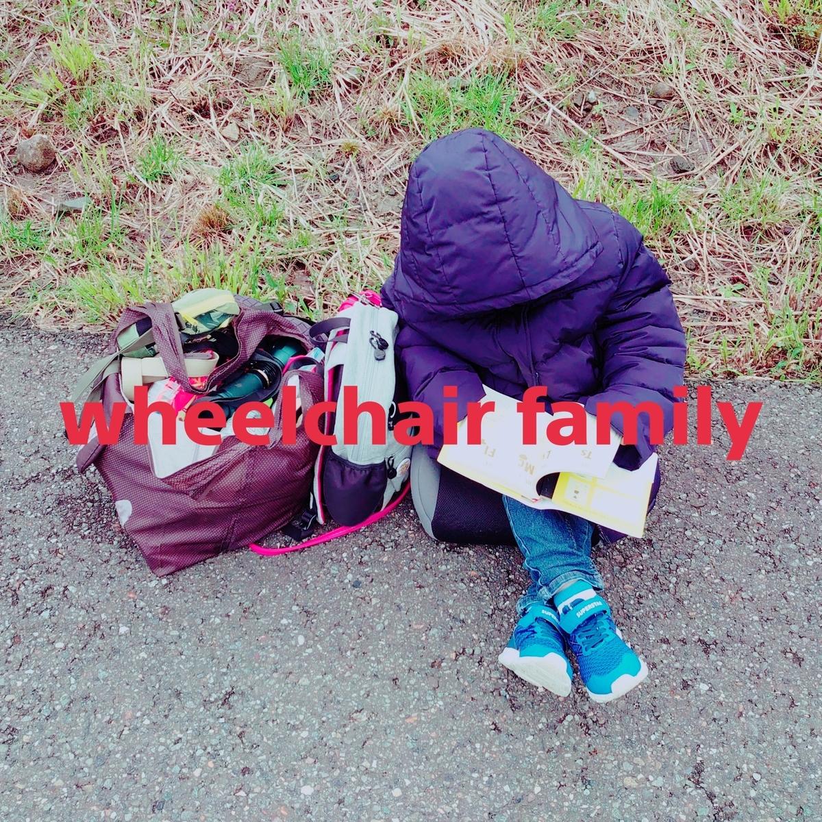 f:id:WheelchairFamily:20200504100853j:plain