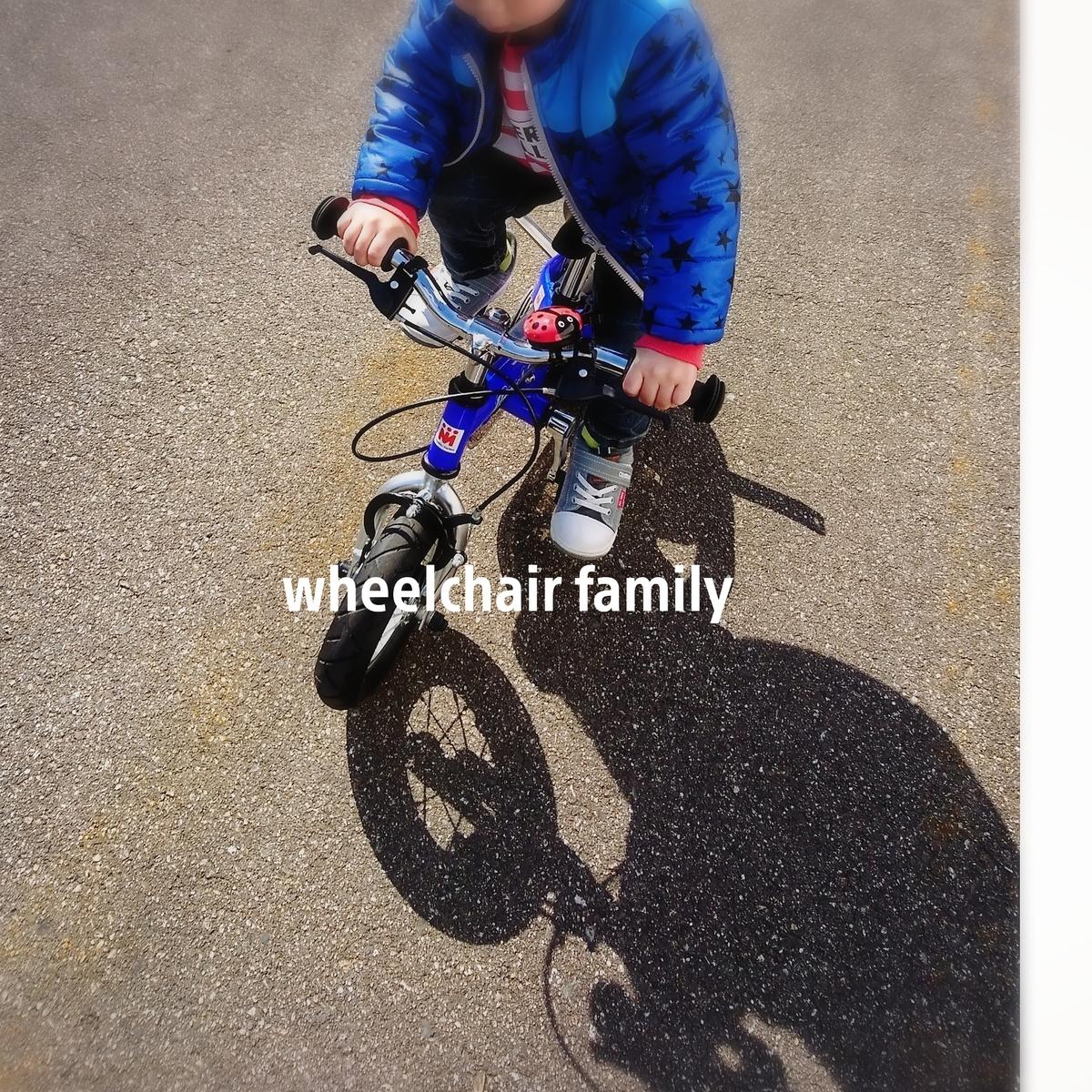f:id:WheelchairFamily:20200529210240j:plain