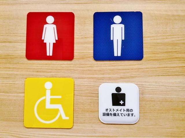 f:id:WheelchairFamily:20200611122340j:plain