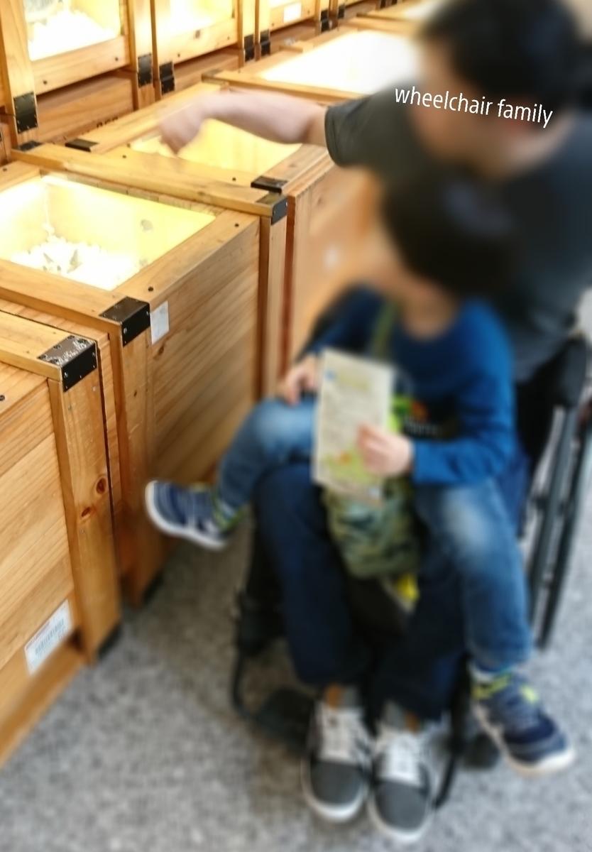 f:id:WheelchairFamily:20200723083828j:plain