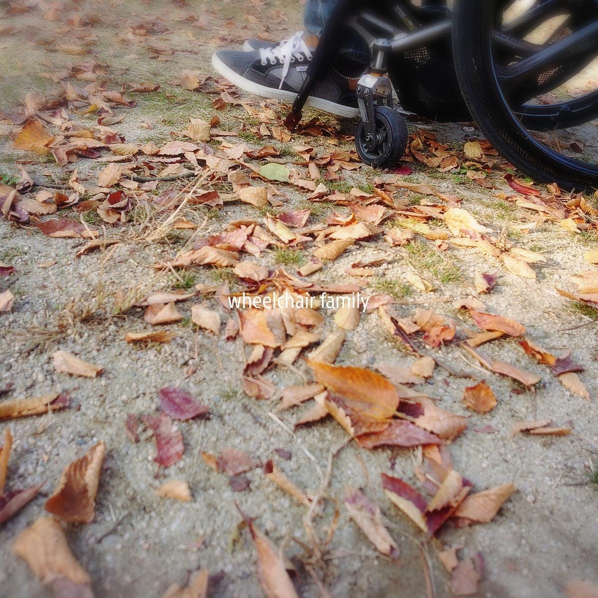 f:id:WheelchairFamily:20201116210944j:plain