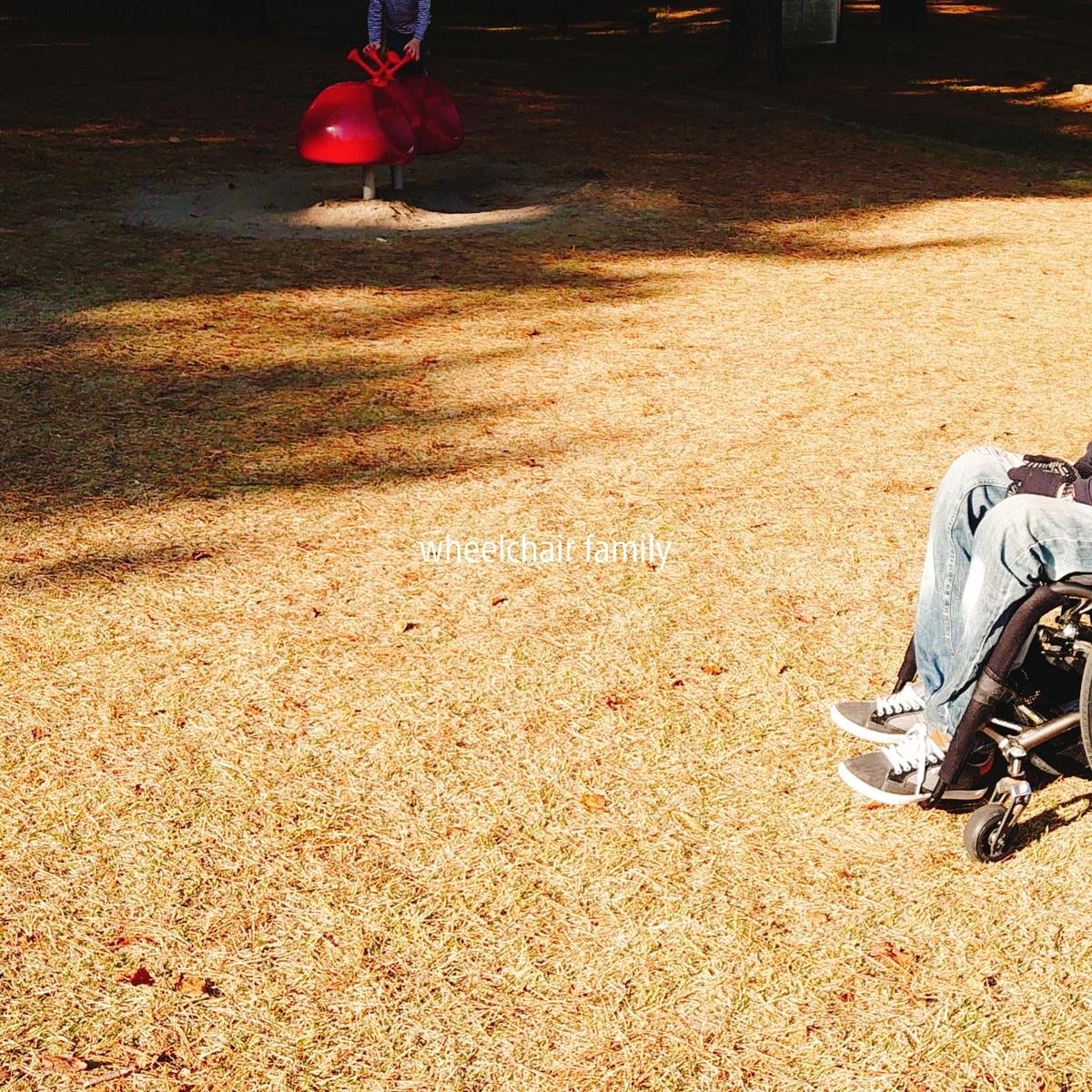 f:id:WheelchairFamily:20201116211331j:plain