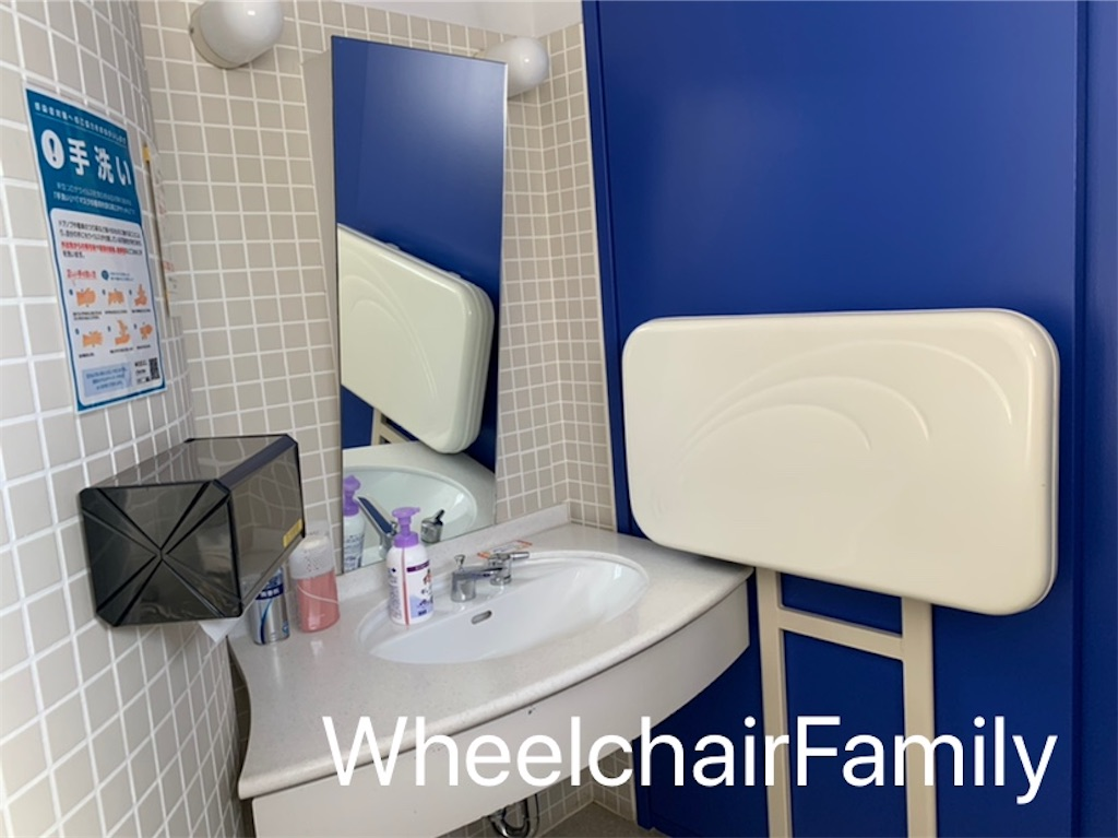 f:id:WheelchairFamily:20210116150233j:image