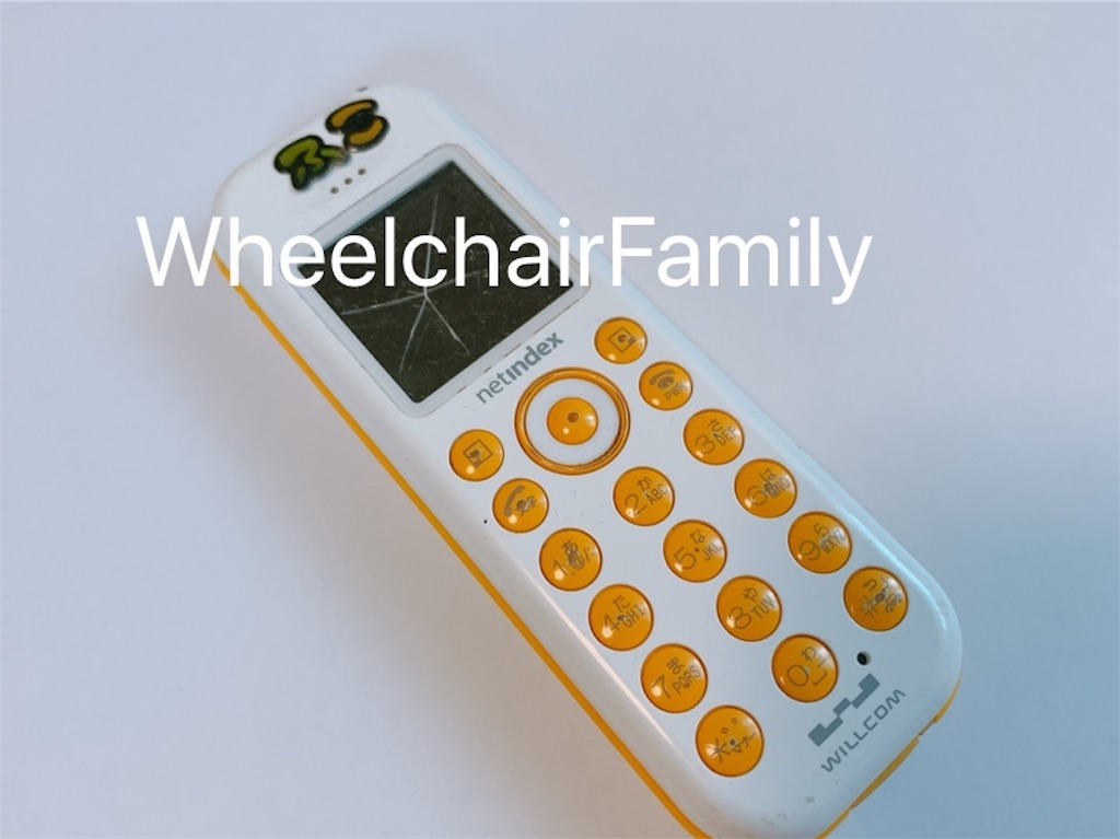 f:id:WheelchairFamily:20210408090100j:image