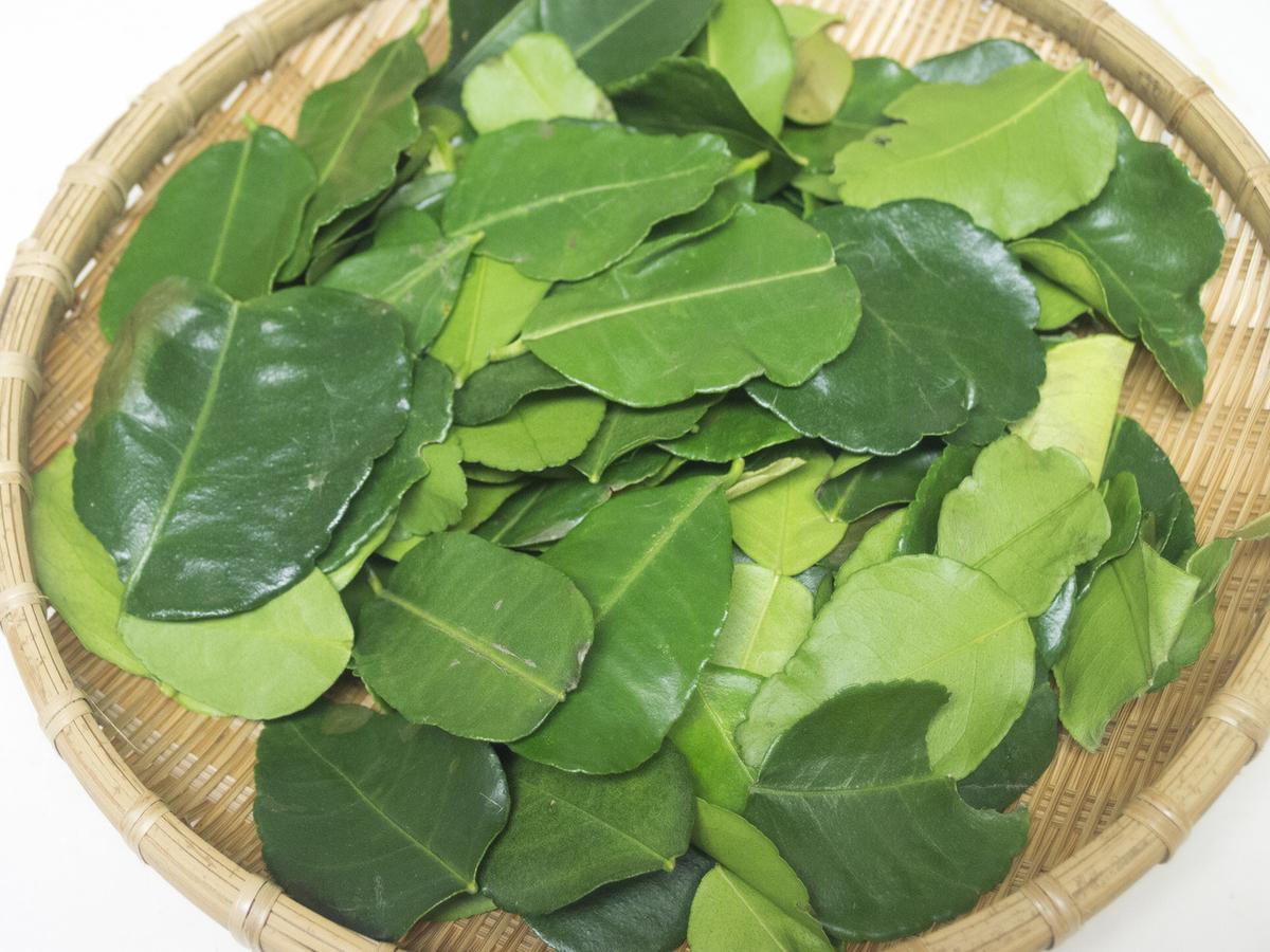 カフィアライムの葉(バイマックルー/こぶみかんの葉)