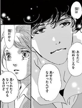 f:id:YAMAKO:20200913190102j:plain