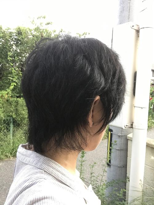 f:id:YOW:20170801185540j:image
