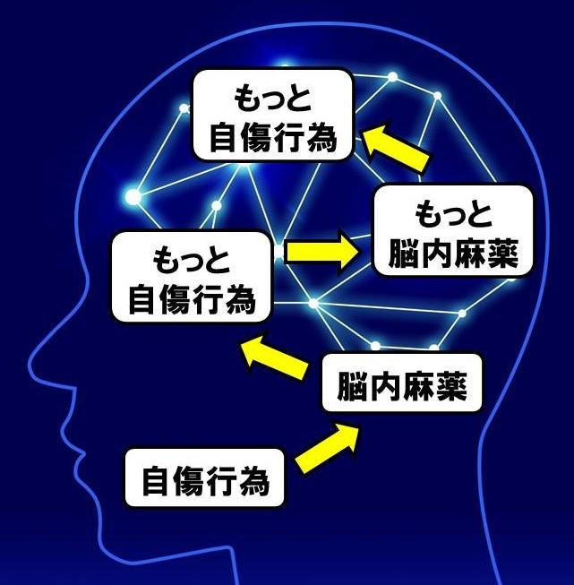 f:id:YUKAHISA:20200414235937j:plain