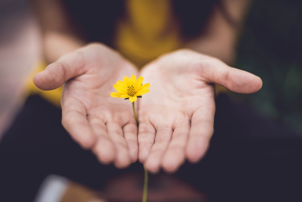 掌に花を乗せる女性