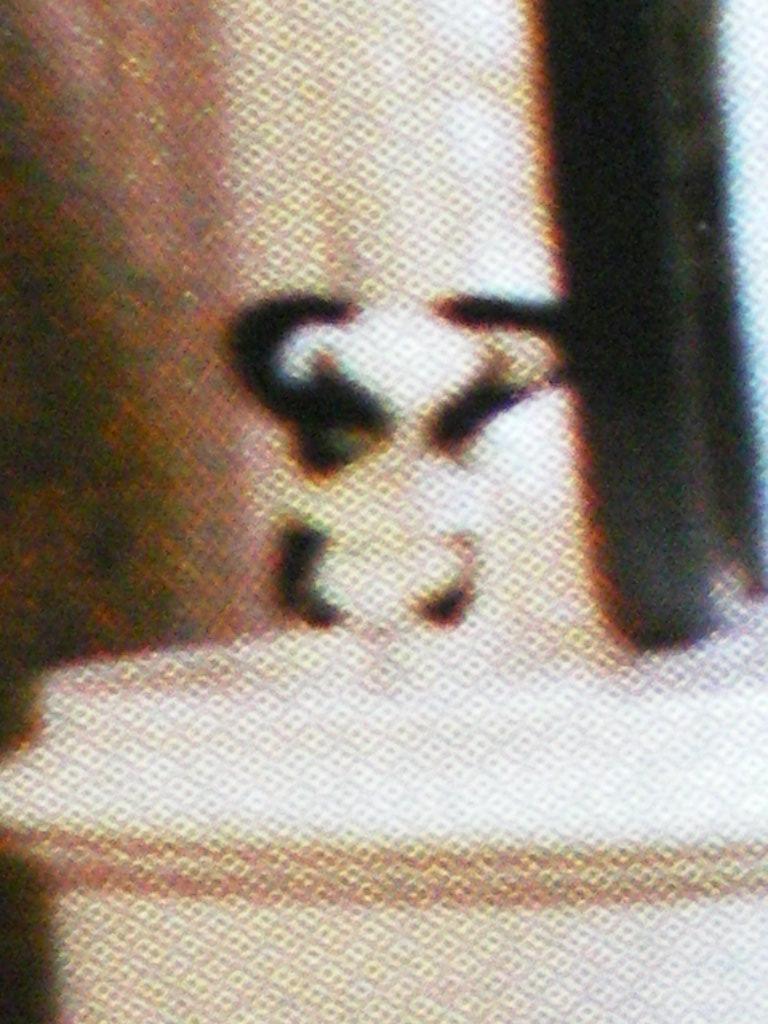 f:id:YUYUKOALA:20071019003705j:image