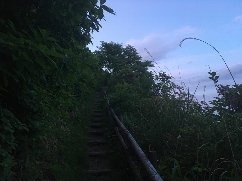f:id:Y_takahashi_Y:20210611183514j:plain
