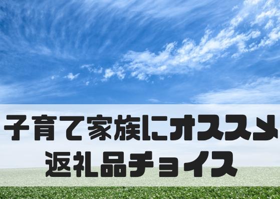 f:id:YadokariCaptain:20181021082320j:plain