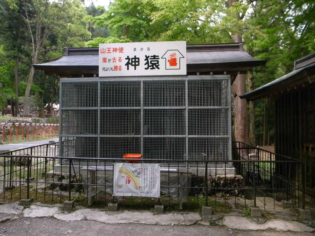 f:id:Yagyu8bei:20070108014832j:plain