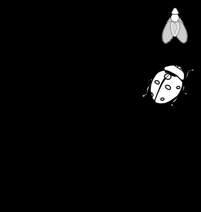 f:id:Yakuzaishi-Y-co:20190630085307p:plain