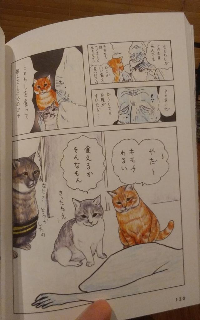 f:id:Yama-Mikasa:20180814163647j:plain