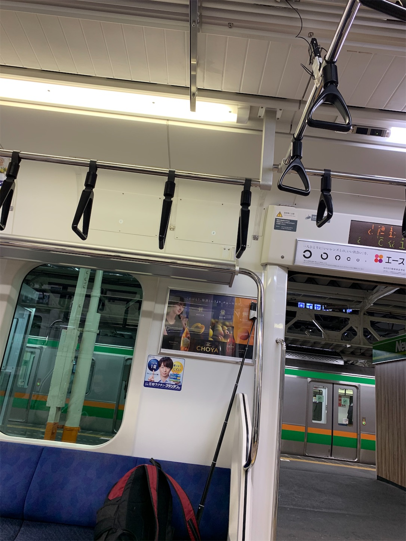 f:id:Yama-Mikasa:20210312214242j:image