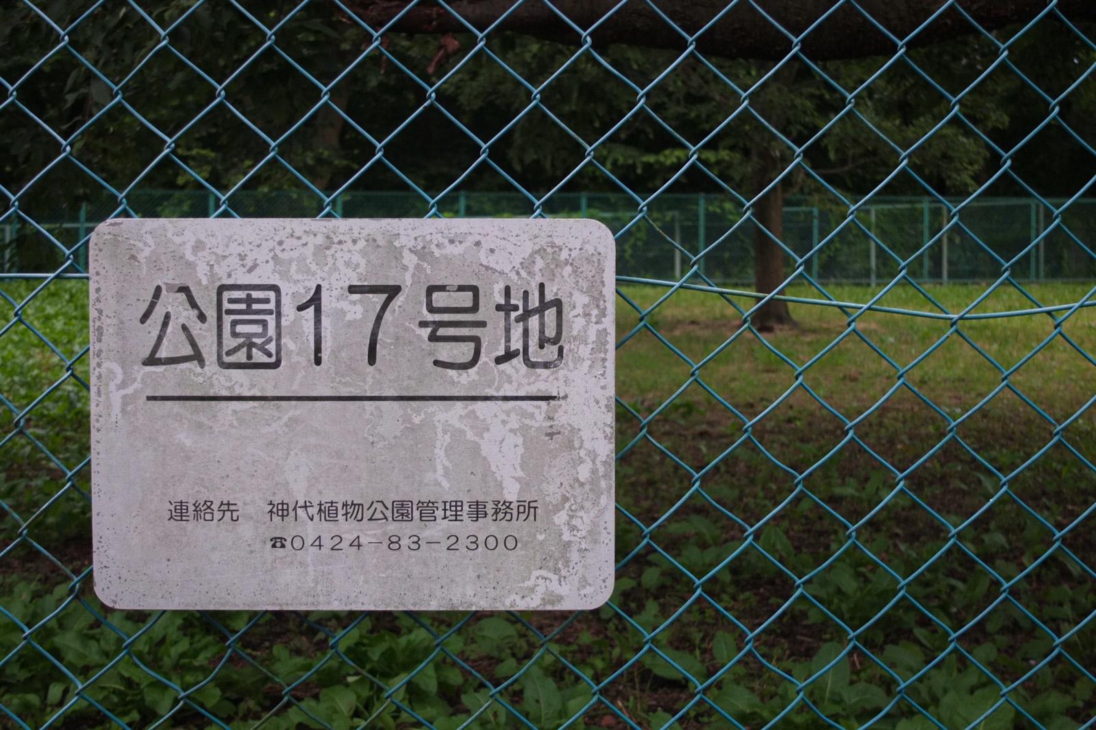 f:id:Yamadamado:20200706163502j:plain
