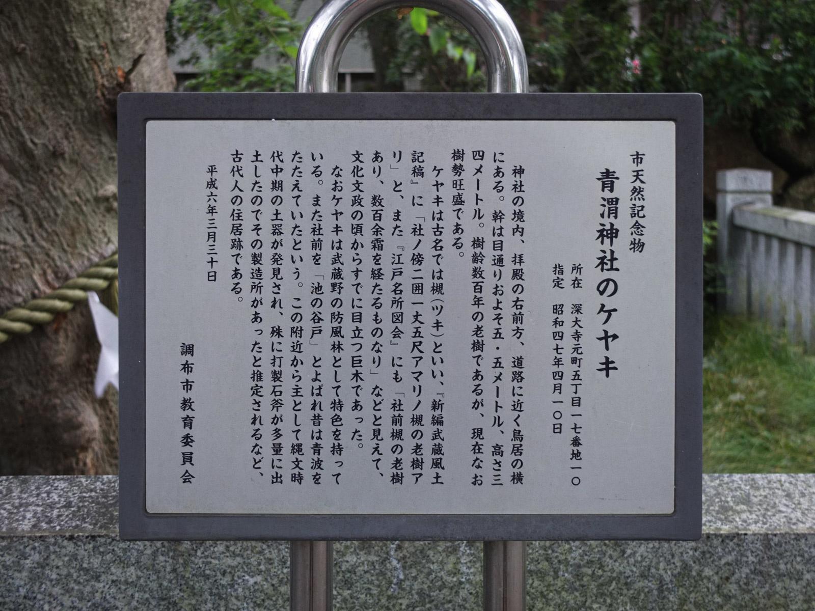 f:id:Yamadamado:20200706163615j:plain