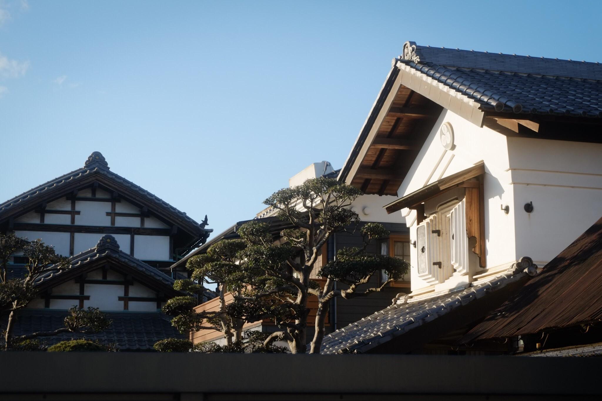 f:id:Yamadamado:20210118014100j:image