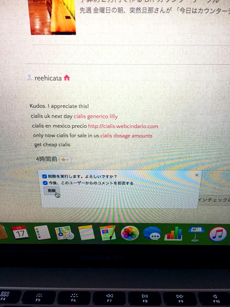 f:id:Yamanao:20180317220446j:plain