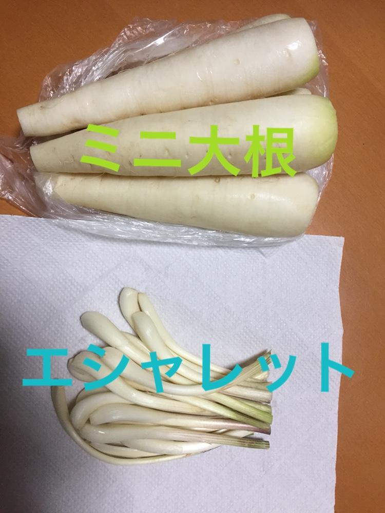 f:id:Yamanao:20180513231040j:plain