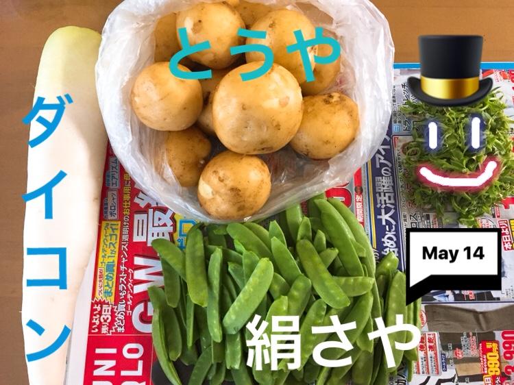 f:id:Yamanao:20180514032841j:plain