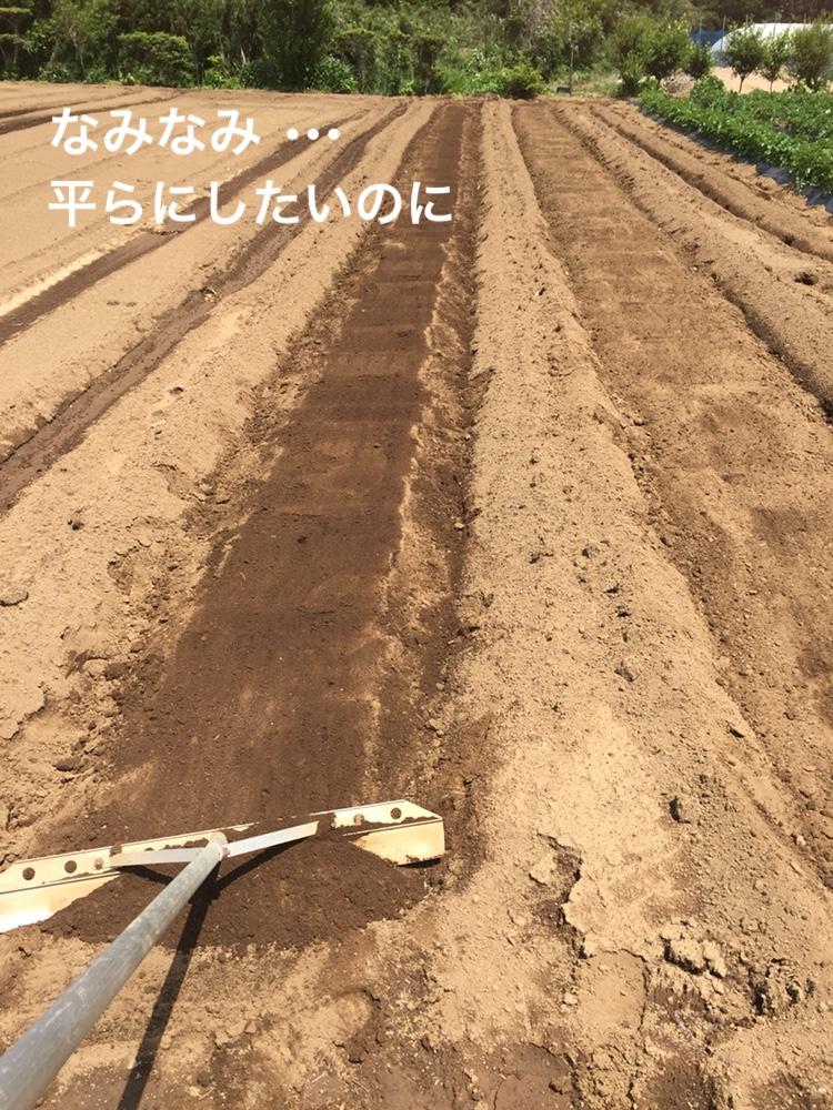 f:id:Yamanao:20180517231858j:plain