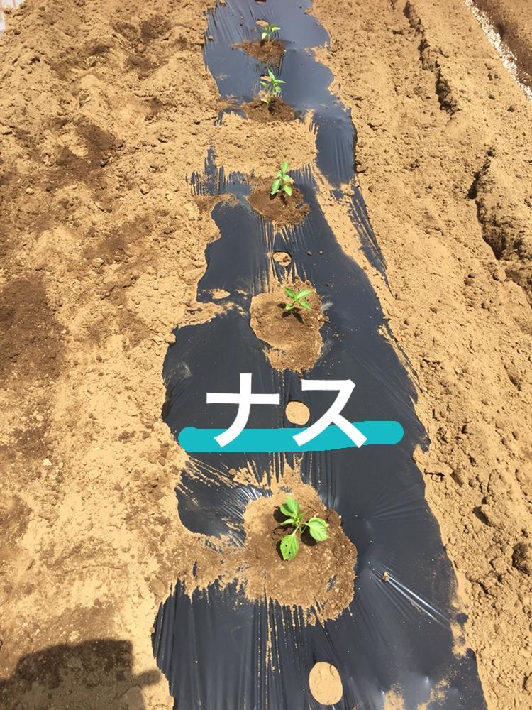 f:id:Yamanao:20180518000206j:plain