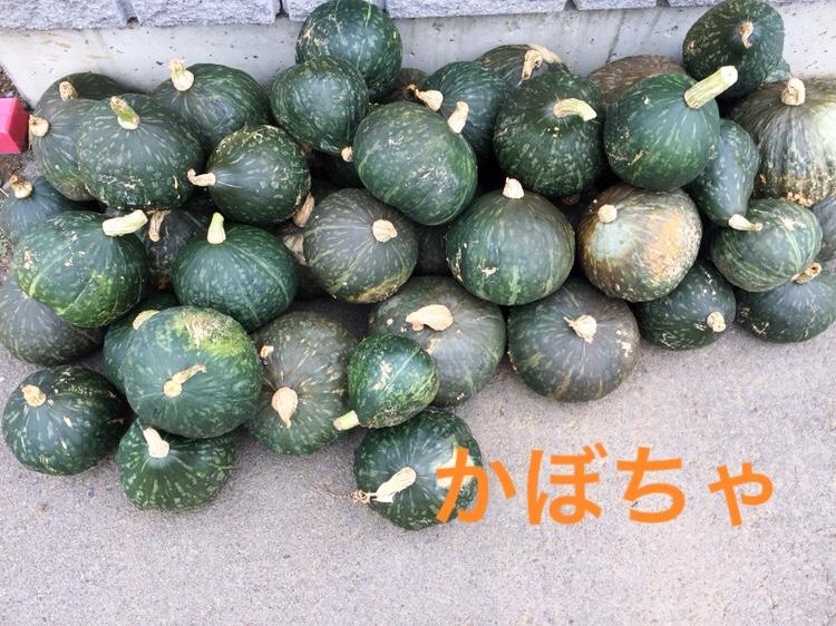 f:id:Yamanao:20180917085650j:plain