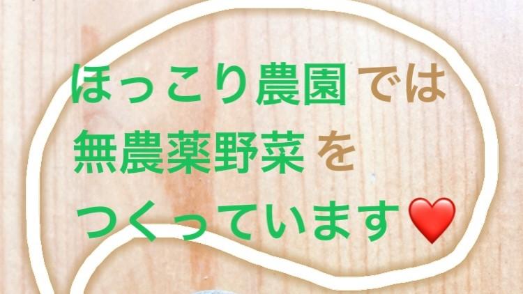 f:id:Yamanao:20181120213052j:plain