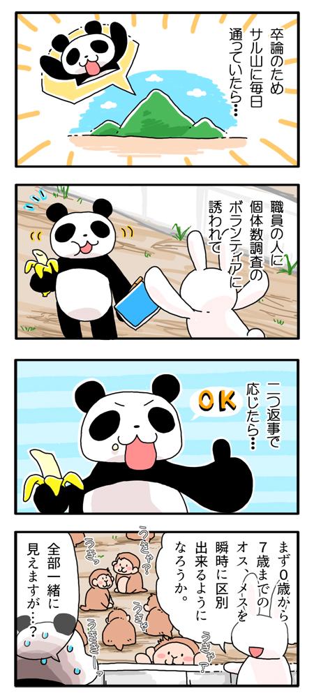f:id:Yamanekoken:20170822164501j:plain