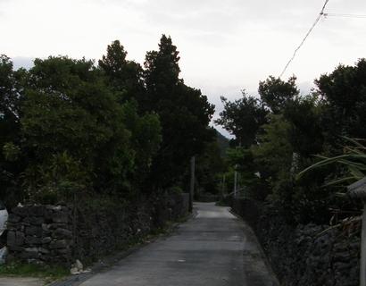 20110306182519