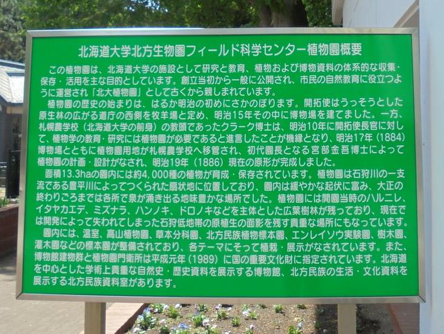 f:id:Yamaoka:20190526122416j:image