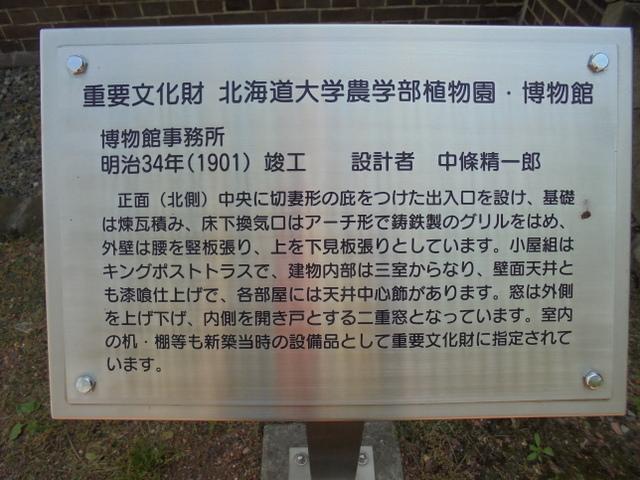 f:id:Yamaoka:20190526123826j:image