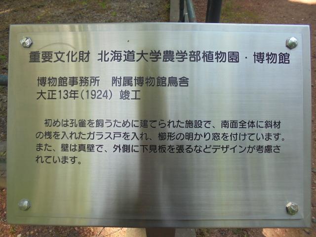 f:id:Yamaoka:20190526123944j:image