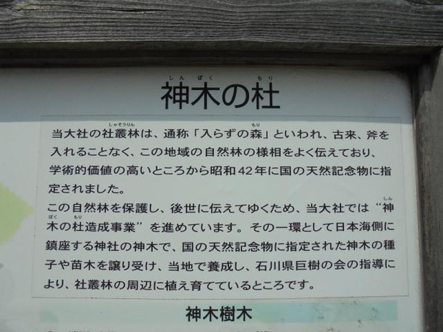 f:id:Yamaoka:20190622143640j:image