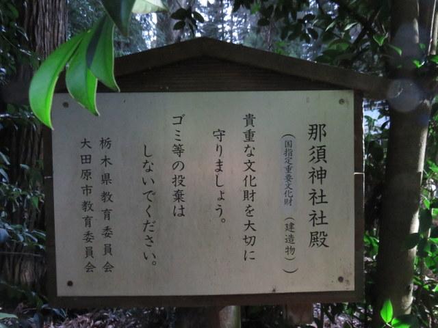 f:id:Yamaoka:20200112163035j:image