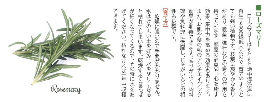 f:id:Yamatojktachikawa:20190827144806p:plain