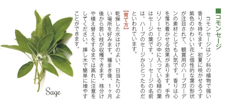 f:id:Yamatojktachikawa:20190827144807p:plain